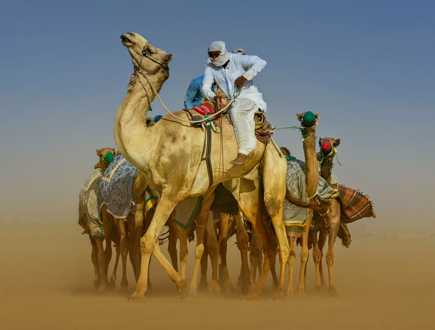United Arab Emirates tile image