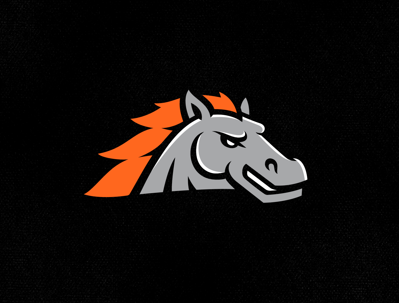 Canberra Cavalry tile image